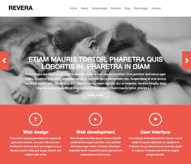 wordpress.fabthemes.revera11