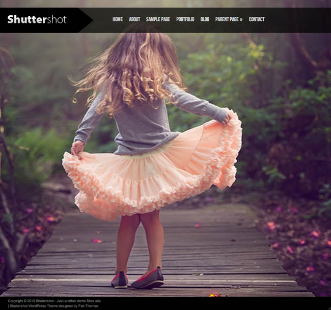 wordpress.fabthemes.shuttershot1