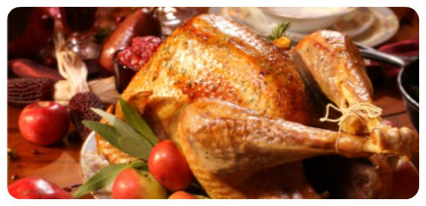 Herb and Duck Fat Roasted Turkey - Dish Picture