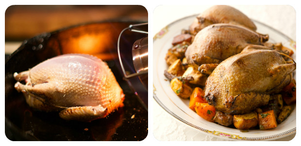 Roast Pigeon with Root Vegetables - Dish Picture