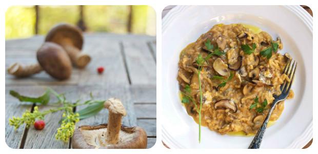 Cremy Portobello Mushroom Risotto - Dish Picture