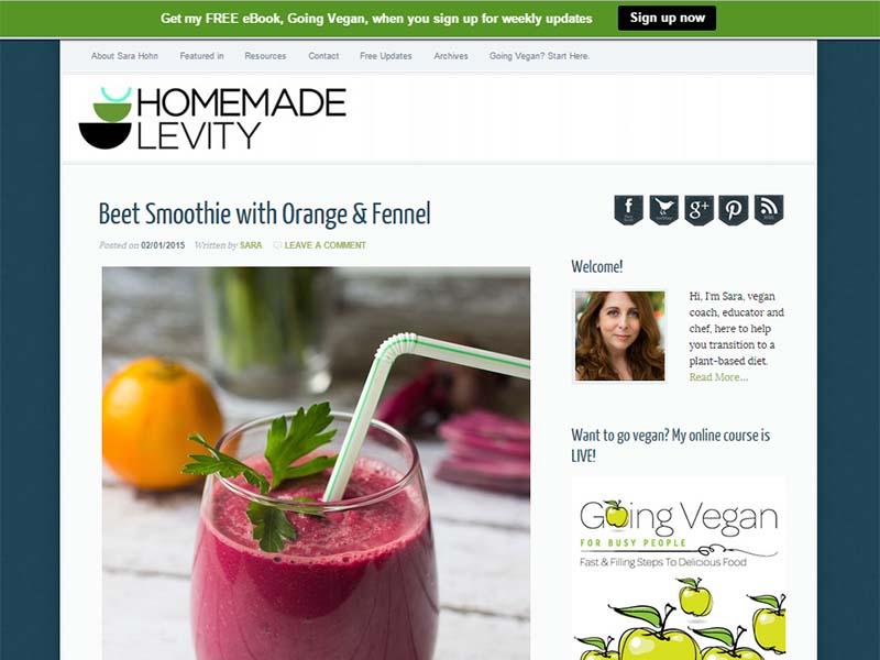 Homemade Levity Website Screenshot