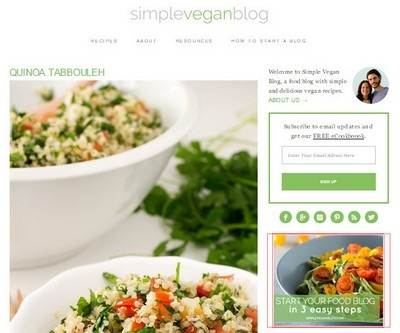 Simple Vegan Blog Website Screenshot