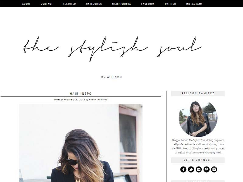 The Stylish Soul - Website Screenshot