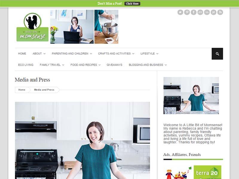 A Little Bit of Momsense - Website Screenshot