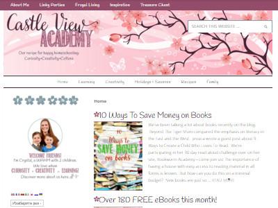 Castle View Academy - Website Screenshot