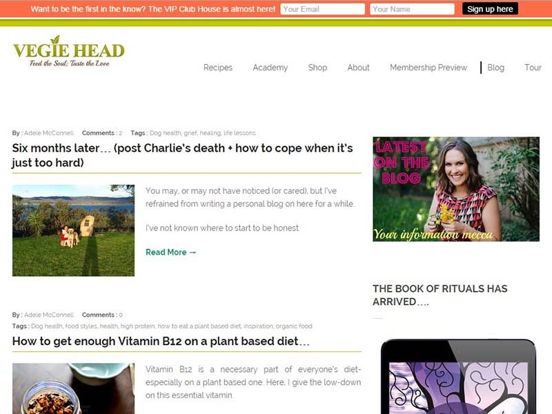 Vegie Head Website Screenshot