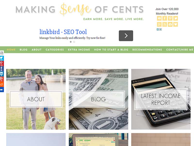 Making Sense of Cents - Website Screenshot