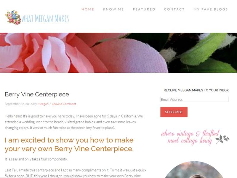 What Meegan Makes - Website Screenshot