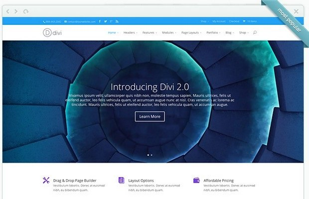 Divi Theme Screenshot