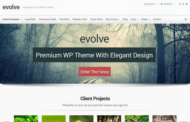 Evolve Theme Screenshot
