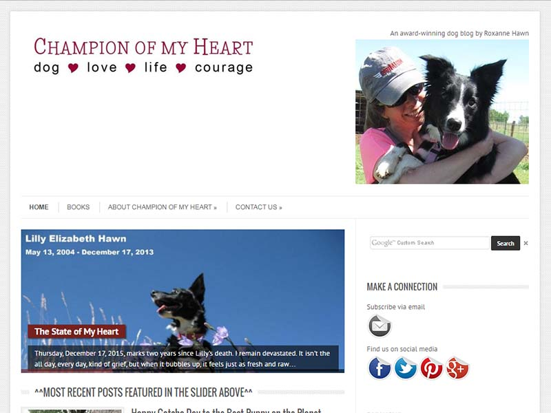 Champion Of My Heart - Website Screenshot
