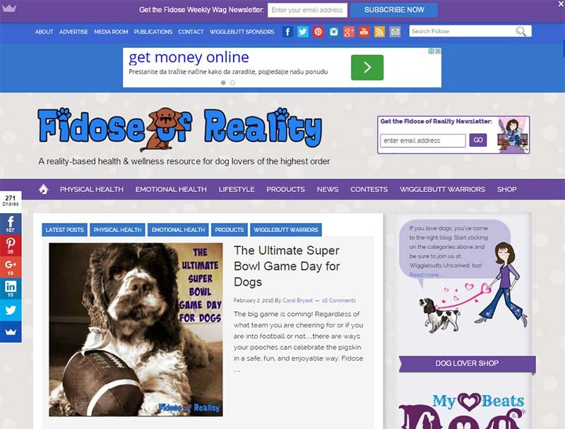 Fidose of Reality - Website Screenshot