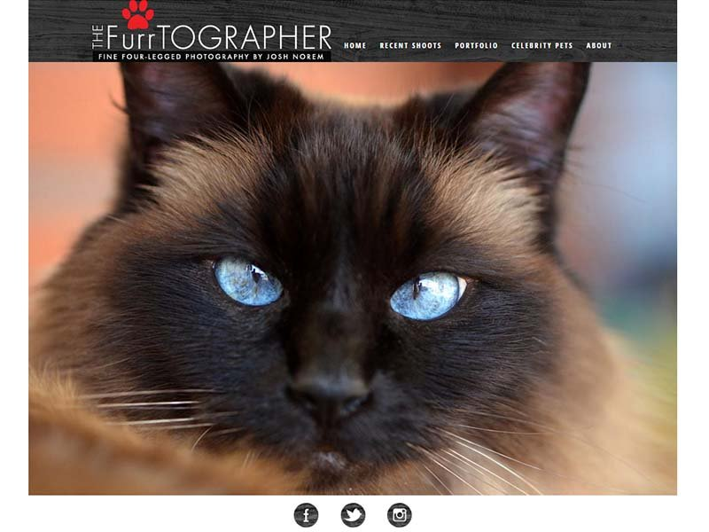 The  Furrtographer - Website Screenshot