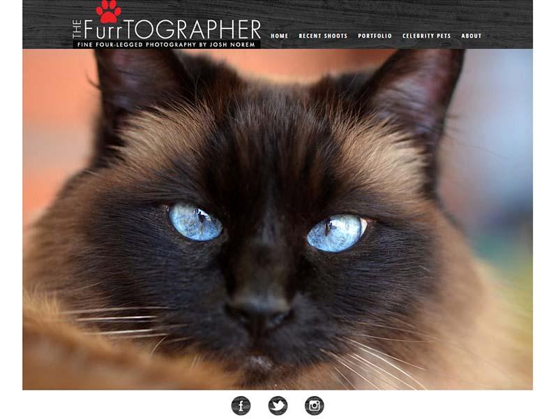 The  Furrtographer - Website Screenshot