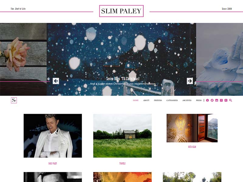 Slim Paley - Website Screenshot