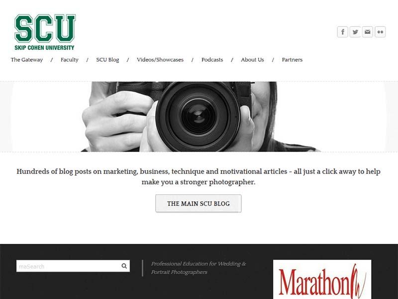 Skip Cohen University - Website Screenshot