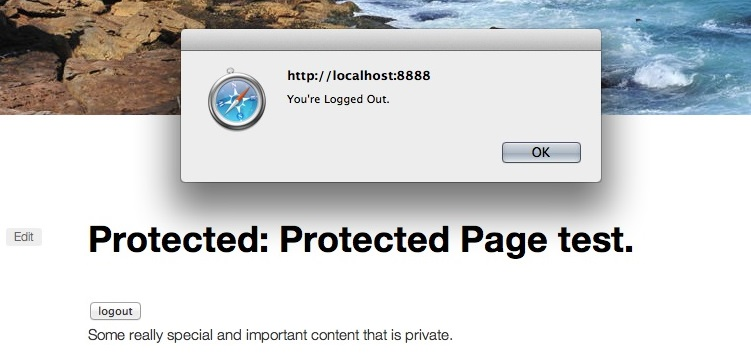 Protected Posts Logout Button