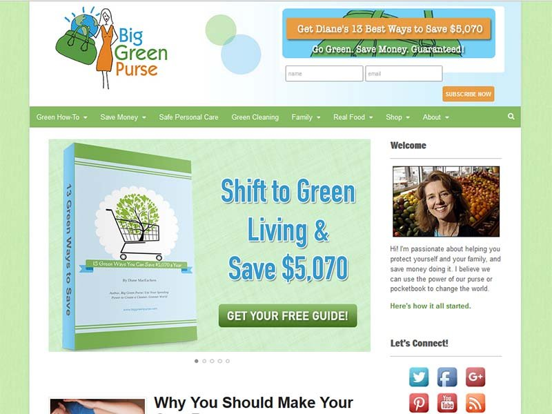 Big Green Purse - Website Screenshot