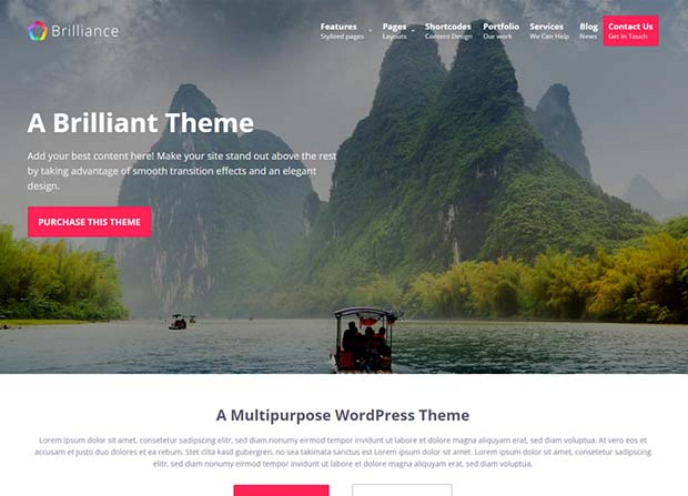 the best wordpress themes in 2016