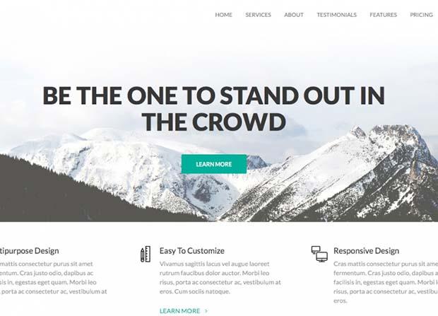 Coni Pro Theme Screenshot