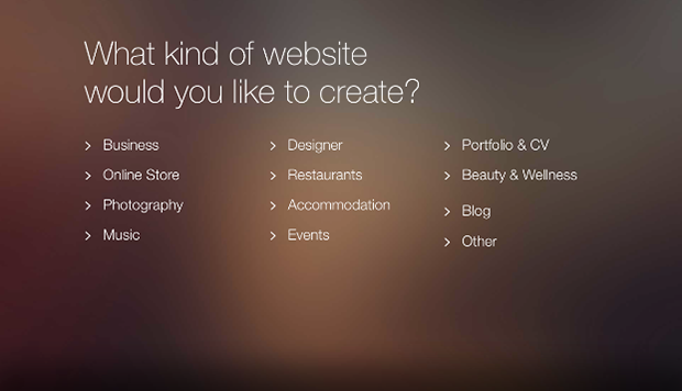Wix Website Options