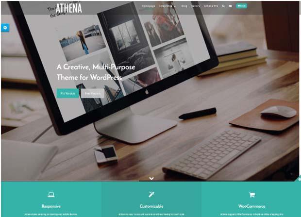 Athena Pro Theme Screenshot