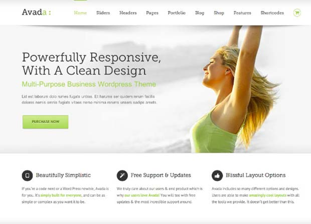 Avada Theme Screenshot