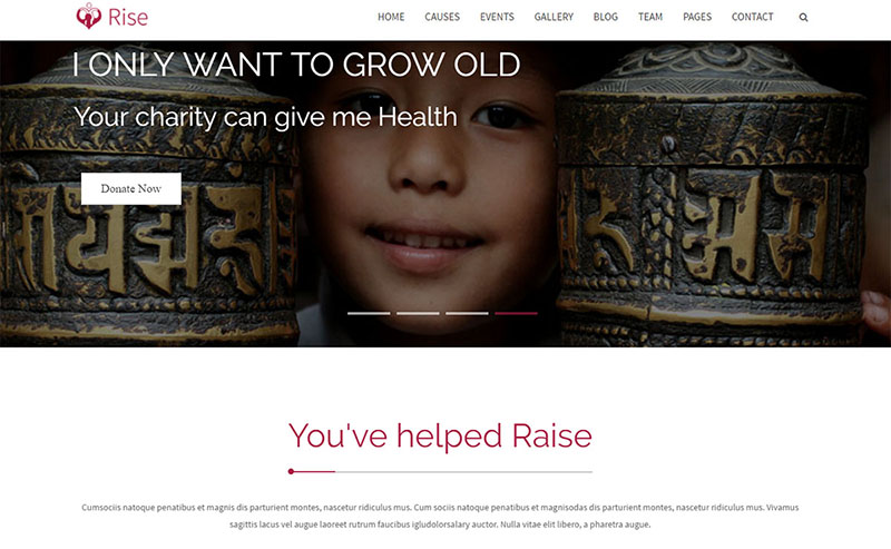Rise charity theme