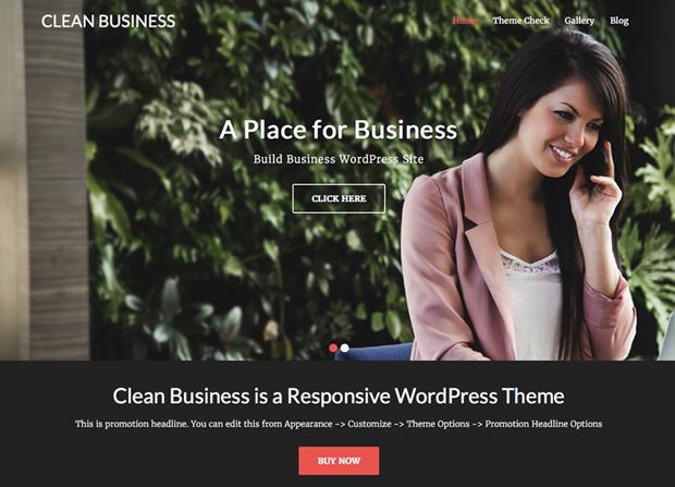 Clean Business Theme Screenshot