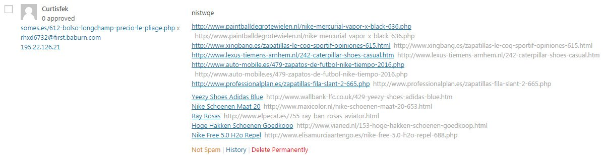 Spam comment in WordPress example