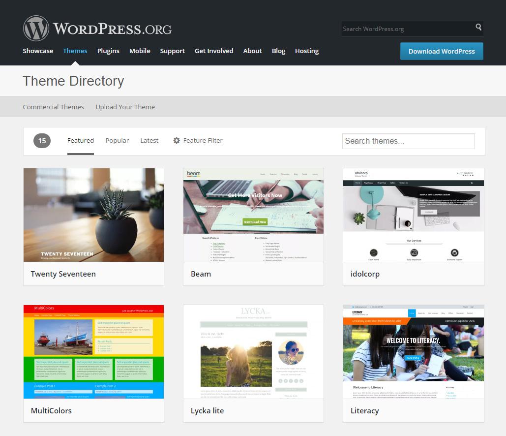 Wordpress: What Is A WordPress Theme?