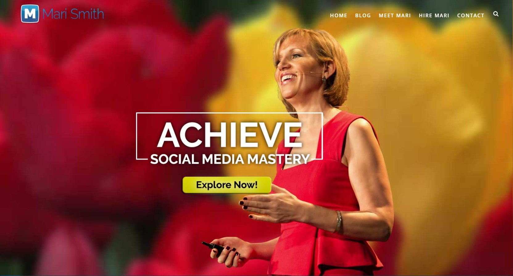 Mari Smith Website
