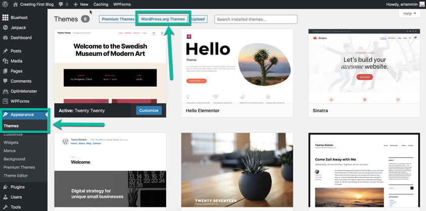 wordpress appearance theme