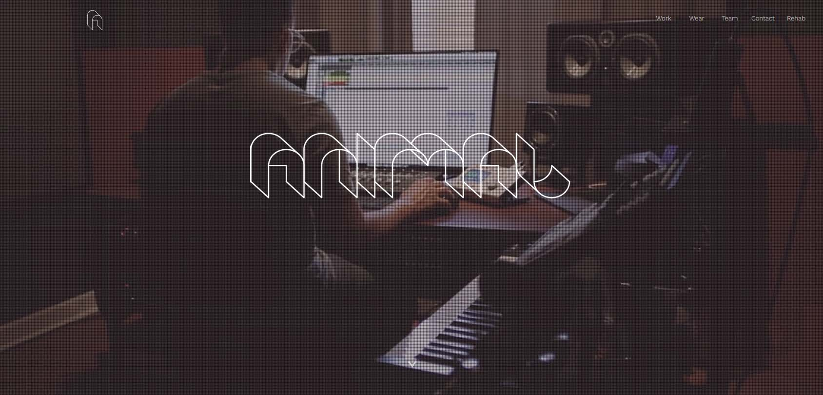 Animal Music Homepage