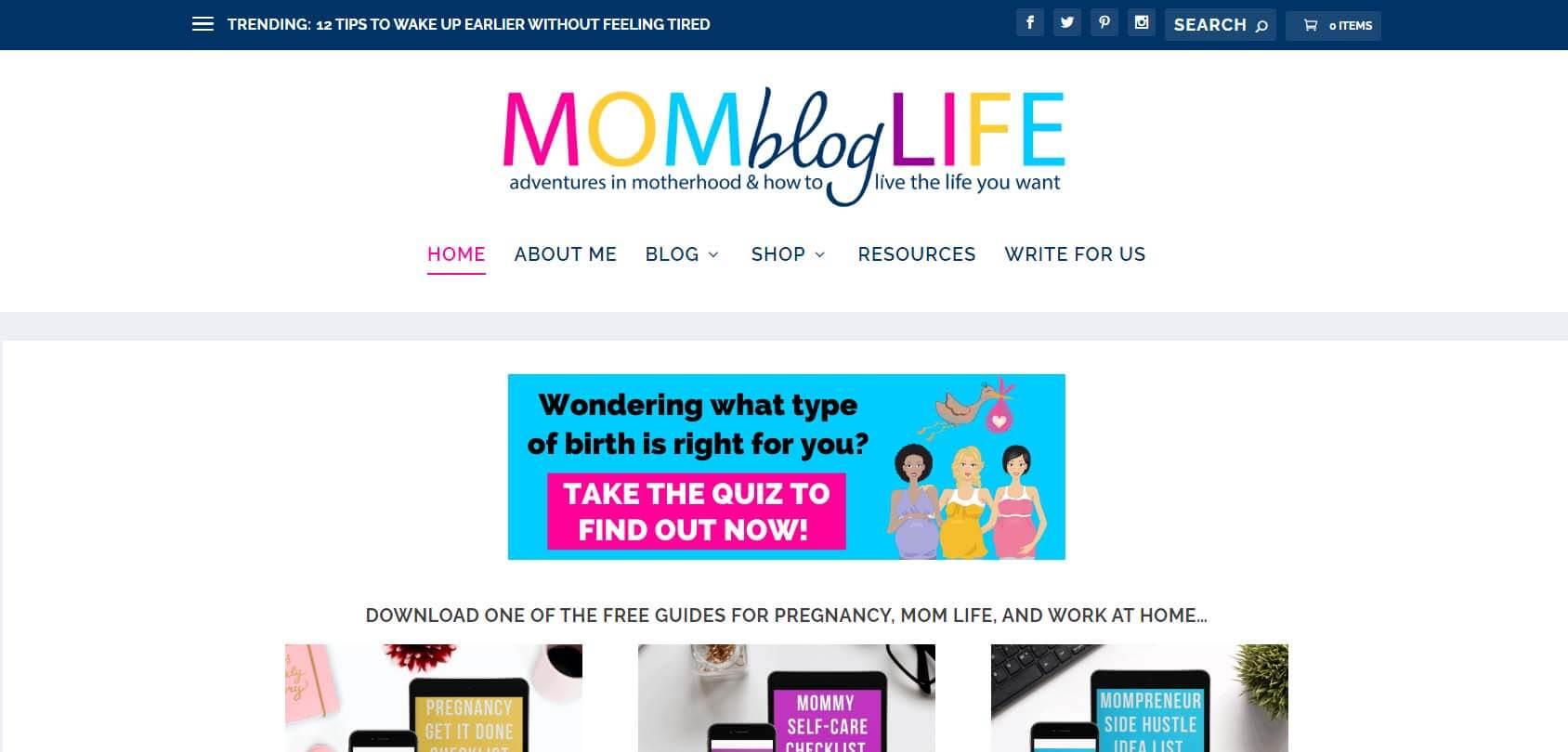 Mom Blog Life Homepage