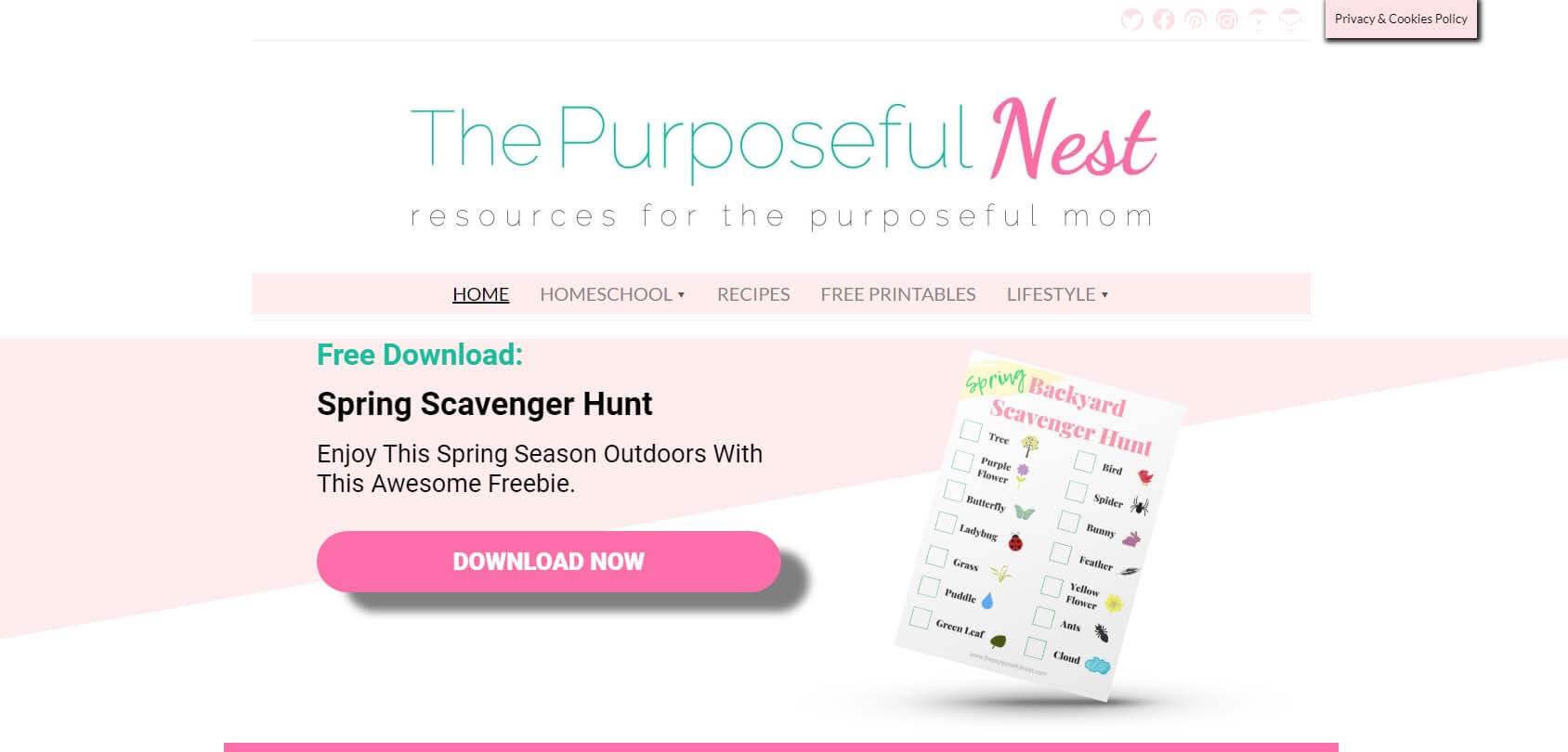 The Purposeful Nest Homepage